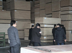 热烈欢迎裕森木业、金三环装饰及其他装饰公司高层来访安顺木业!