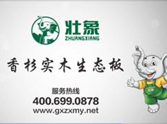 热烈祝贺壮象木业品牌广告在央视展播