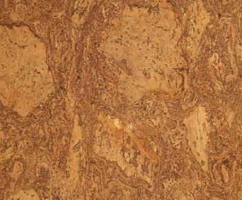 静林软木地板