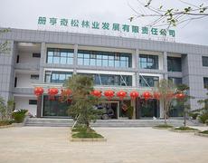 品牌发展驶入快车道,南盘江与中国木业网战略联盟形成