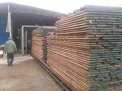 正立:木材干燥过程开裂?这几种应对措施必须知道