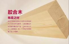木尽其用——园方林业亮相5月广州住博会!