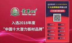 """品牌创造价值—黄果树荣获""""2018中国板材十…"""