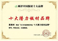 """未来可期 黄果树板材喜获""""十大潜力板材品牌""""荣誉"""