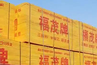 沭阳县桑墟华盛手机信息验证送38彩金板厂