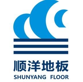 宇洋汽车logo