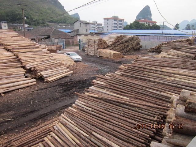 主营:杉木原木