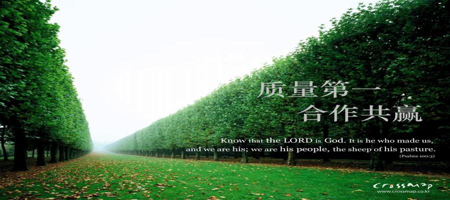 徐州祥福润木业有限公司
