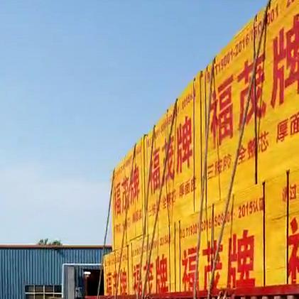 沭阳县桑墟华盛木业板厂