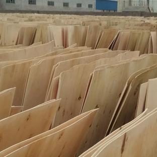 杨木皮子厂