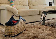 如何清洗地毯?