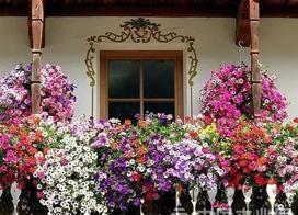 29款建筑墙面装饰图片大全,一面墙花,美了整个家