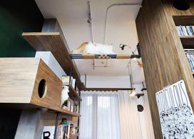 猫奴的工业风之家,75平米一居室小户型装修图