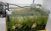 玻璃鱼缸制作方法