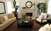家居中有哪些植物是不能摆放的?