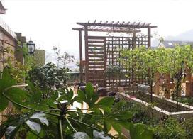 空中花园图片,雨中的景色又别有一番风味