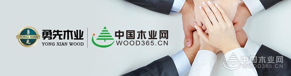 勇先木业与中国木业网战略合作 加速品牌升级