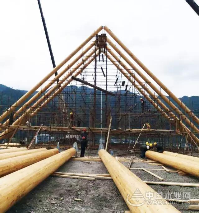园方木业承接全球木结构中胶合圆木柱最长项目工程