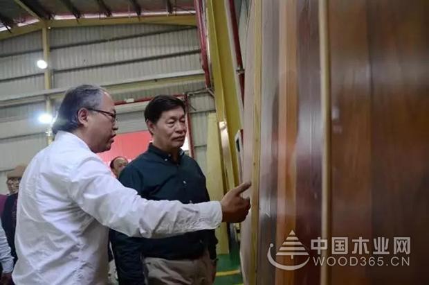 国家住建部总工程师陈宜明赴剑河园方木业考察