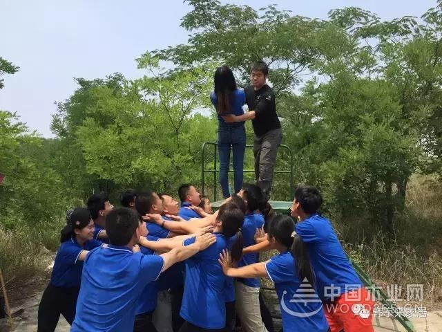 凝心聚力,超越自我——韩宇来家居户外拓展训练