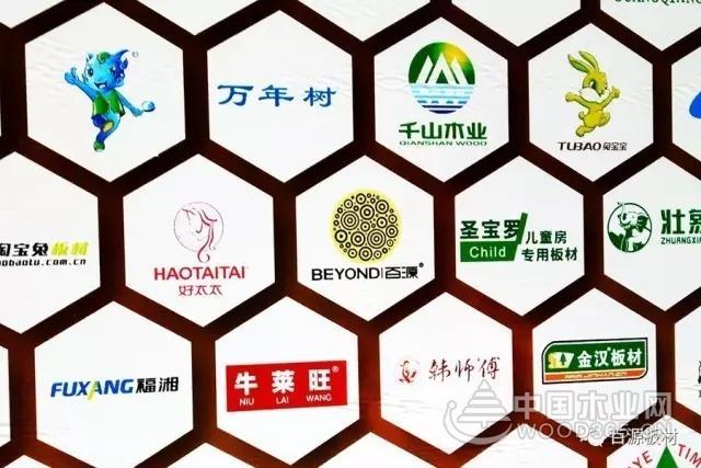 【众望所归】百源板材成功问鼎2017年中国板材十大品牌,勇夺5项荣誉