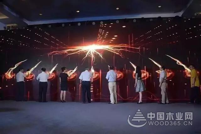 实力的见证,【塑品牌,造未来】热烈祝贺香港绿木源荣获中国十大板材品牌!