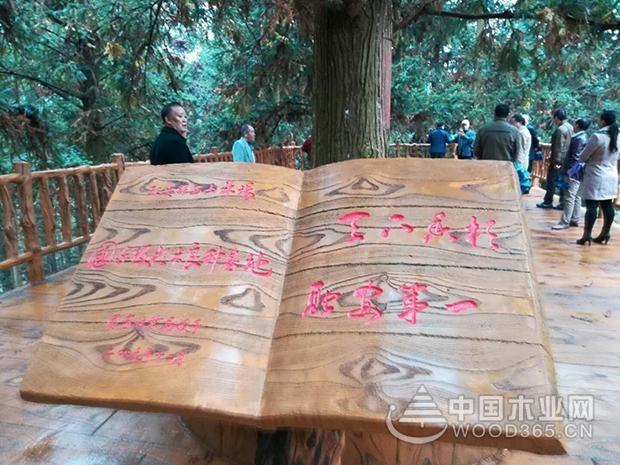 """壮象举办""""香杉文化""""研讨会"""