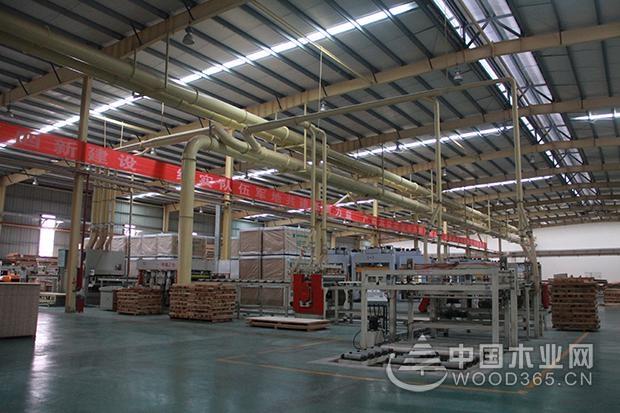 园方木业:高起点谋划高质量推进 高层次共赢