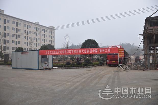曲美家居集团股份有限公司副总赵瑞杰一行到访科林木业参观考察