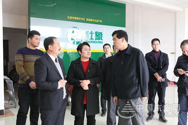 广西壮族自治区政协副主席到访壮象木业