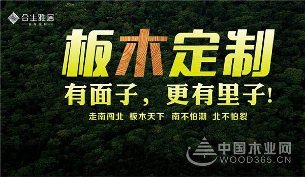广州定制家居展完美收官,合生雅居邀您共赴《远大前程》