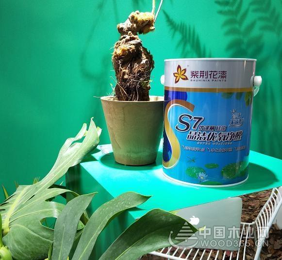 紫荆花涂料携环保涂料和健康家居理念 亮相杭州国际超级健康展