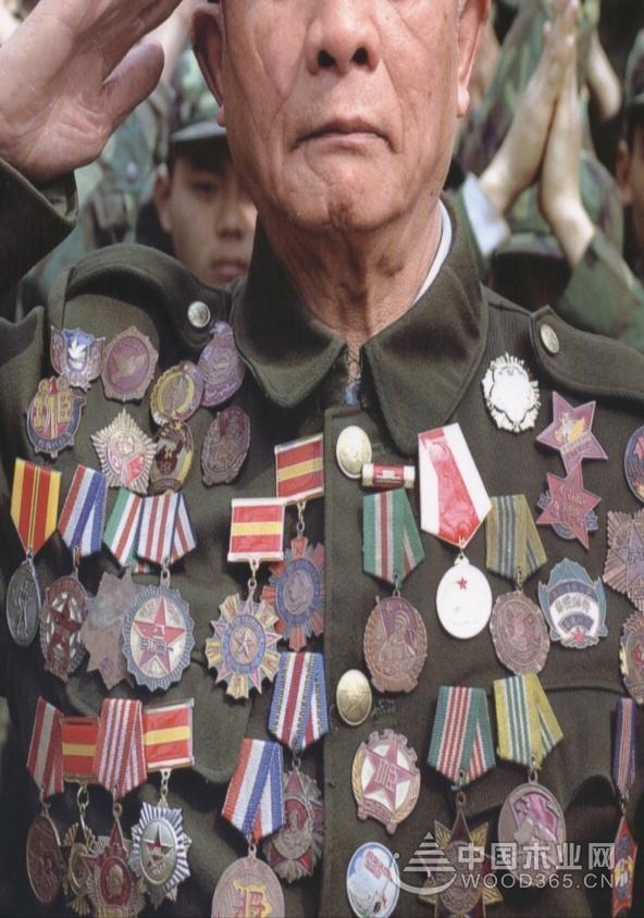 老兵的勋章——鹏森缘艰苦卓绝的风雨历程