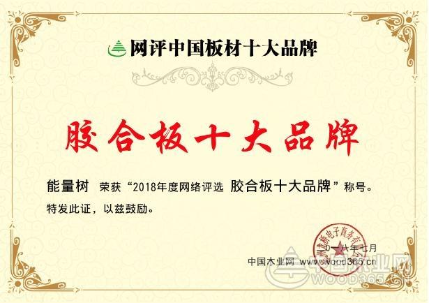 """强力出击!能量树荣获""""胶合板十大品牌""""荣誉"""
