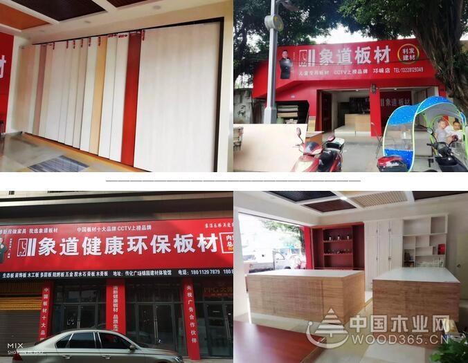 象道板材:四川区域品牌招商火热进行中