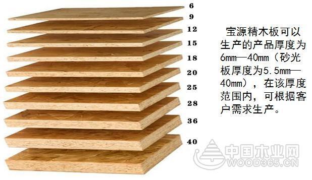 出征临沂木博会 宝源精木板受到行业一致好评