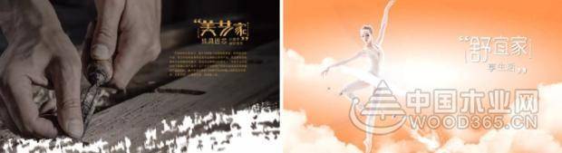 """热烈祝贺平安树品牌舒宜家系列""""春""""新品发布会圆满召开!"""