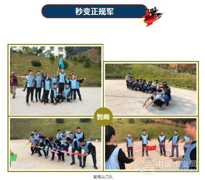智阁板材:熔炼团队 合力制胜