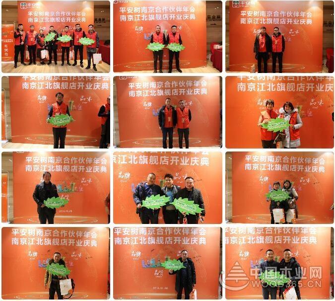 热烈祝贺平安树南京江北旗舰店开业典礼圆满举行!
