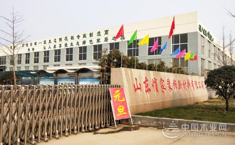 强强联合 山东俏家/山东爱格与中国木业网达成合作