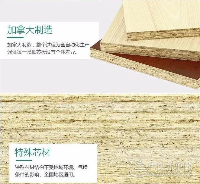 科技造木,健康造家——兔寶寶即將閃耀上海建博會