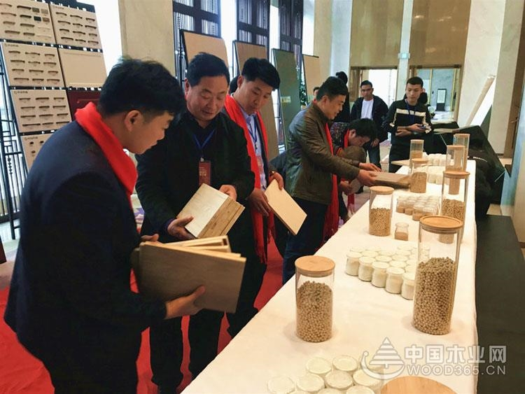 CCTV-13央视新闻频道:千山木业大豆胶板材成建筑环保新材料