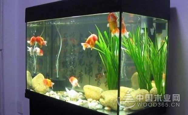 鱼缸风水:教你如何正确摆放鱼缸