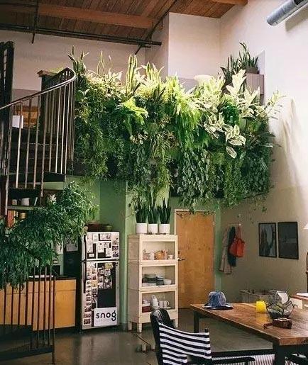 9个室内入户花园设计图片