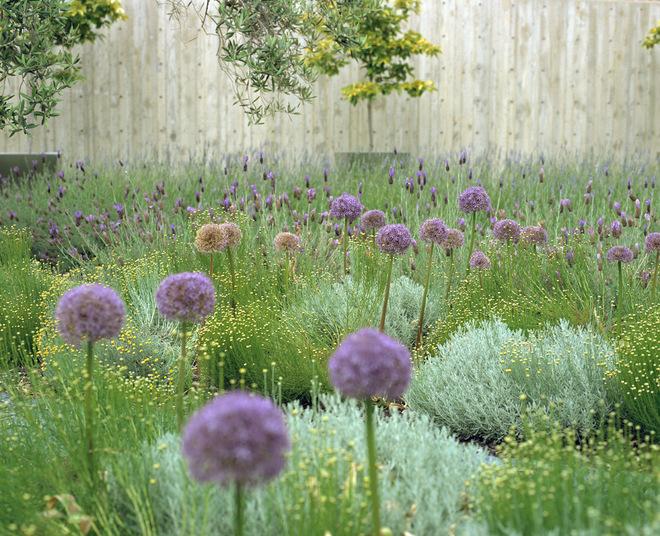 入户花园装修案例精选,室内入户花园装修效果图赏析