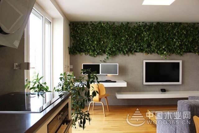 绿意盎然,9款充满生机客厅植物摆放效果图