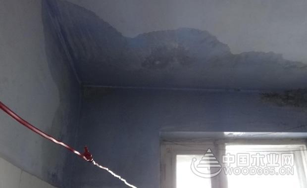 屋顶漏水怎么办?房顶漏水怎么办?五个处理方案教你怎么解决