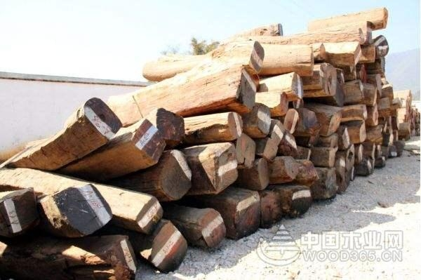 缅甸花梨木木材相关知识