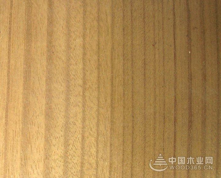 黑心木莲花纹和木材知识