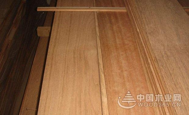 木地板优质材料:孪叶苏木的基本知识